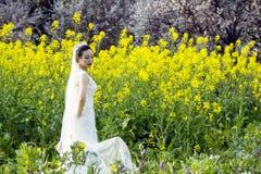 Невеста с белым платьем свадьбы в поле цветка рапса Стоковые Фото