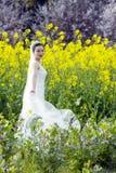 Невеста с белым платьем свадьбы в поле цветка рапса Стоковая Фотография RF