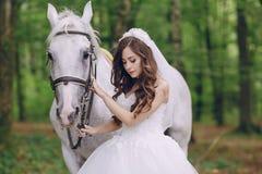 Невеста с лошадью Стоковые Фотографии RF