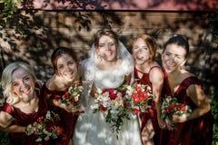 Невеста с bridesmaids на парке на день свадьбы стоковые изображения