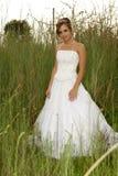 невеста травянистая Стоковые Изображения RF