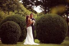 Невеста целуя ее groom Стоковое Изображение RF