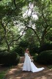 невеста Стоковые Изображения