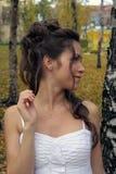 невеста birchwood Стоковые Фотографии RF