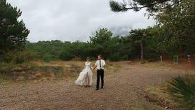 Невеста Groom идя в парк видеоматериал