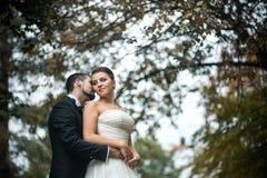 Невеста Groom обнимая от задней части стоковое изображение
