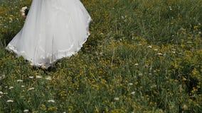 Невеста HD в платье свадьбы идя на зеленую траву сток-видео