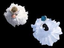 Невесты Стоковые Изображения RF