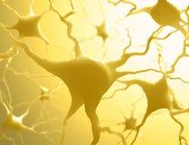 Невроны стоковое фото