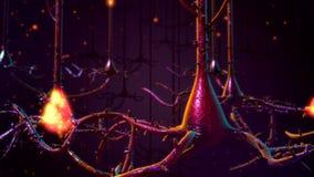 невроны Стоковые Фото