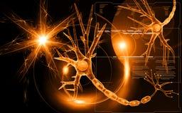 неврон бесплатная иллюстрация