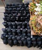 неделя Испании святейших шествий вероисповедная Стоковое фото RF