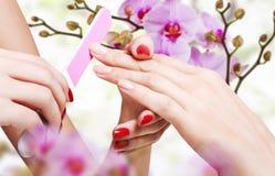 Нежная забота ногтей. Стоковое Фото