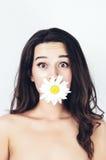 Нежная милая красивая удивленная маленькая девочка лета с топлесс телом держит цветки camomiles Белая предпосылка Стоковое Фото