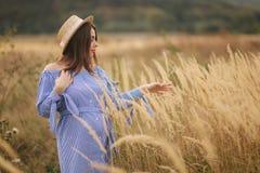 Нежная прогулка беременной женщины в поле Дама со шляпой в голубом платье ослабьте время Женщина ждет младенца стоковые изображения