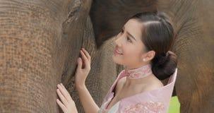 Нежность молодой привлекательной азиатской женщины в традиционном костюме со слоном сток-видео