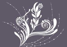нежность предпосылки красивейшая флористическая серая Стоковые Изображения RF
