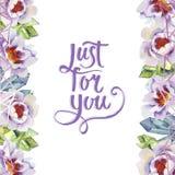 Нежно розовые пионы Флористический ботанический цветок Квадрат орнамента границы рамки бесплатная иллюстрация