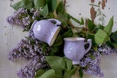 Нежно фиолетовый шар в форме бутона, покрытого с замороженностью Искусство ветвей ceramistWith пушистой сирени Стоковое Изображение RF