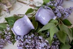 Нежно фиолетовый шар в форме бутона, покрытого с замороженностью Искусство ветвей ceramistWith пушистой сирени Стоковые Изображения