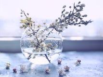 нежные ветви акварели фото искусства цветя фруктовых дерев дерев в прозрачной вазе Стоковое Фото
