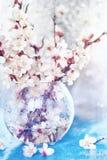 нежные ветви акварели фото искусства цветя фруктовых дерев дерев в прозрачной вазе Стоковые Изображения RF