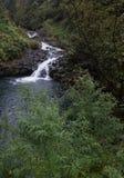 нежный водопад Стоковая Фотография RF
