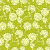 Нежный геометрический одуванчик стиля цветет безшовная картина Стоковые Изображения RF