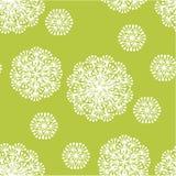Нежный геометрический одуванчик стиля цветет безшовная картина Стоковые Изображения