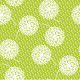 Нежный геометрический одуванчик стиля цветет безшовная картина Стоковое Изображение RF
