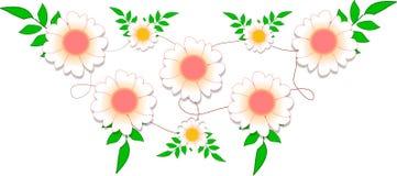 Нежный дизайн цветков воодушевил маргаритками и лозами бесплатная иллюстрация