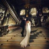 Нежный силуэт невесты идя вверх в острословие театра Стоковое Изображение