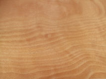 незаконченная древесина Стоковое фото RF