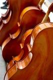 Незаконченные скрипки Стоковое Изображение RF