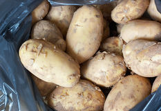 незрелая картошка Стоковое Изображение