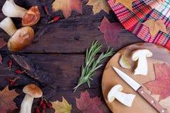Незрелые cepes и кленовые листы на деревянном столе Стоковые Фотографии RF