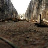 Неизвестная долина стоковое фото