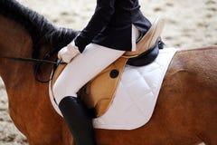 Неизвестный кандидат едет на событии лошади dressage крытом в ridin стоковое фото