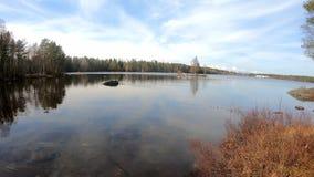 Неимоверно мирное озеро чистой воды окруженное деревьями и сценической красотой березы сосны под небом облачного покрова голубым акции видеоматериалы