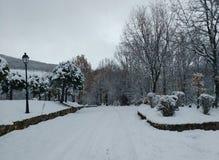 Неимоверный белый ландшафт зимы Стоковые Изображения RF