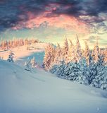 Неимоверный восход солнца зимы в прикарпатских горах с бухтой снега Стоковое фото RF