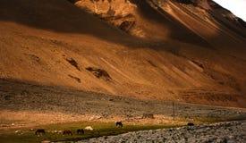 Неимоверный сценарный взгляд высокой горы Стоковое фото RF