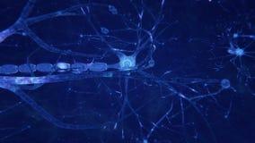 Нейроны передавая электрические сигналы бесплатная иллюстрация