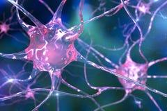 Нейрон, клетка головного мозга иллюстрация штока