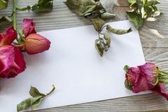 Некоторые вянуть розы с листьями на бумаге Стоковая Фотография