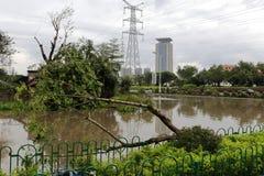 Некоторые затопленные дороги Стоковое фото RF