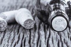Некоторые очень старые бутылки вина Стоковая Фотография
