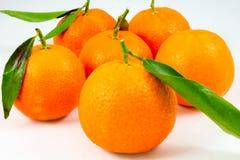 Некоторые сладостные tangerines на белизне Стоковые Фото