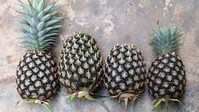 Некоторый ананас на поле Стоковая Фотография