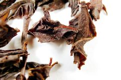 некоторый чай Стоковое Фото